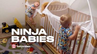 Ninja babies